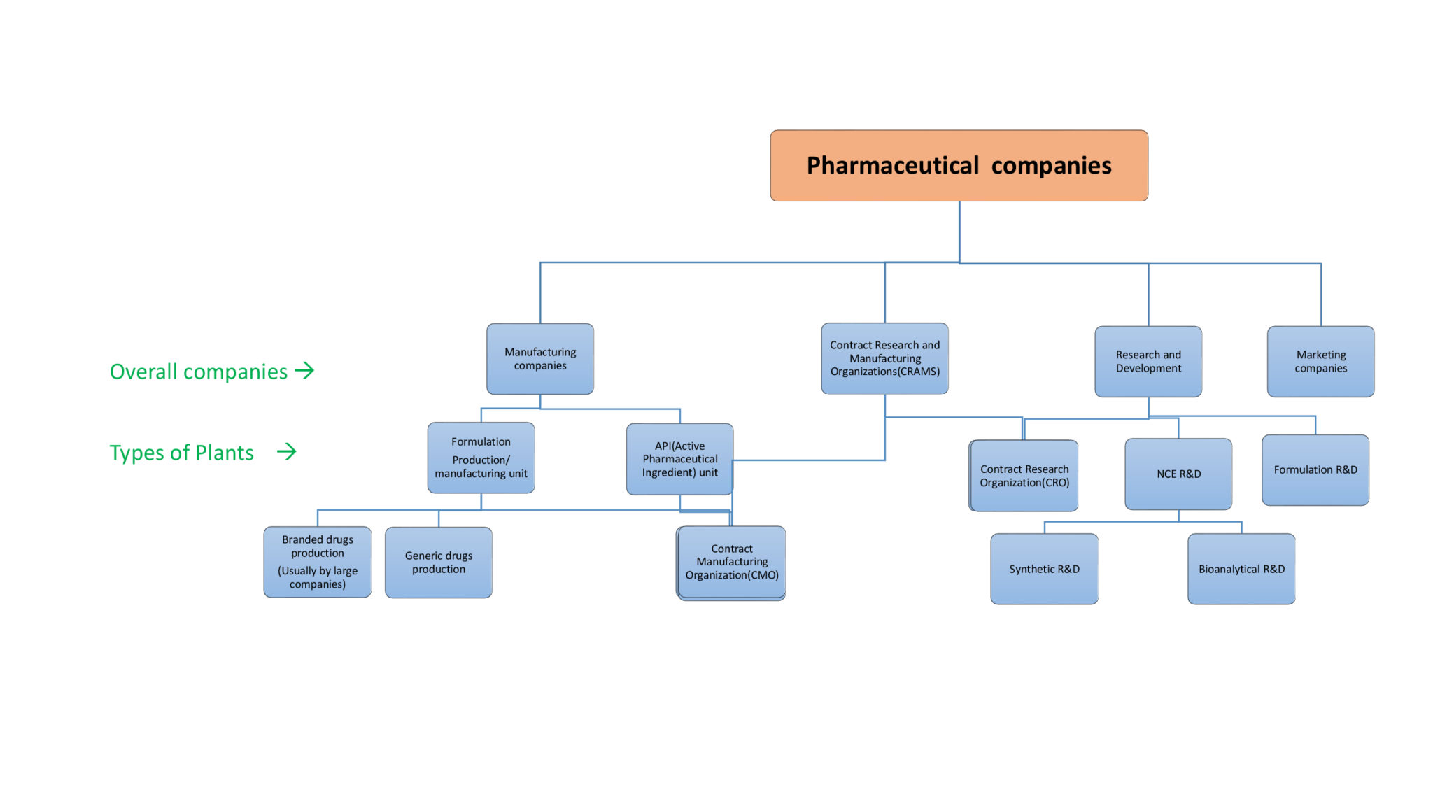 pharmaceutical companies and their plants