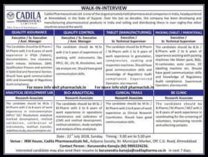 pharma cadila jobs