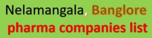 nelamangala pharma companies