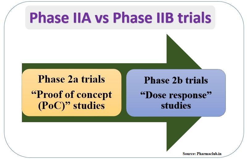 Phase 2a vs phase 2b